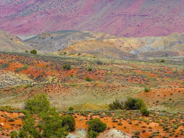 nature paints 1 | Arches Nation - thomgollas | ello