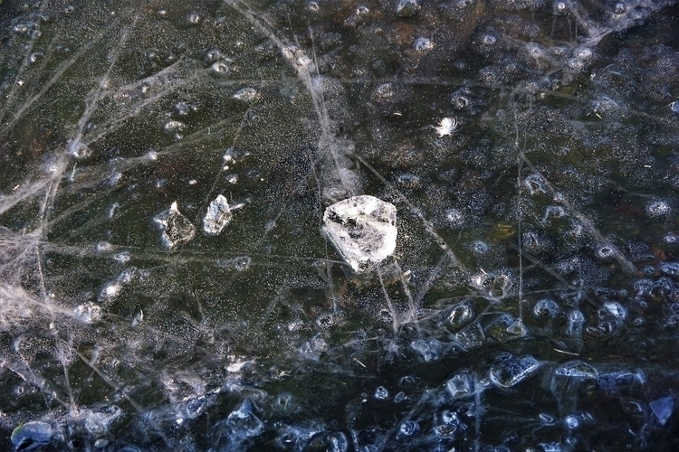 ice-cold abstract - Ice ice bab - mwielaert   ello