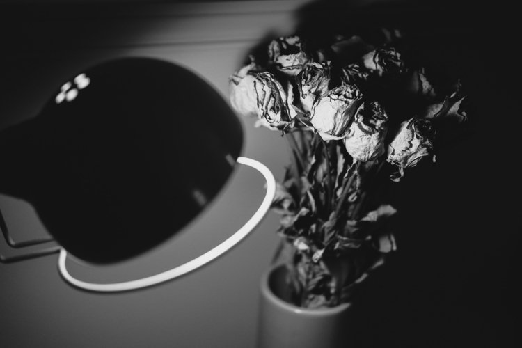 Flowers - fujifilm, photography - yooyye   ello
