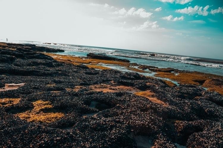beach, sky, photo, claromeco - yemzem | ello