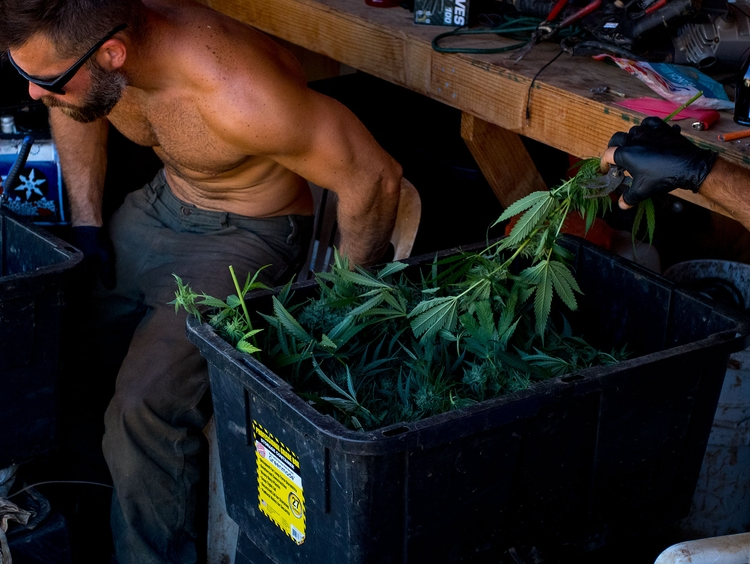 Heat, 2017 | mixed feelings pho - katherineacart | ello