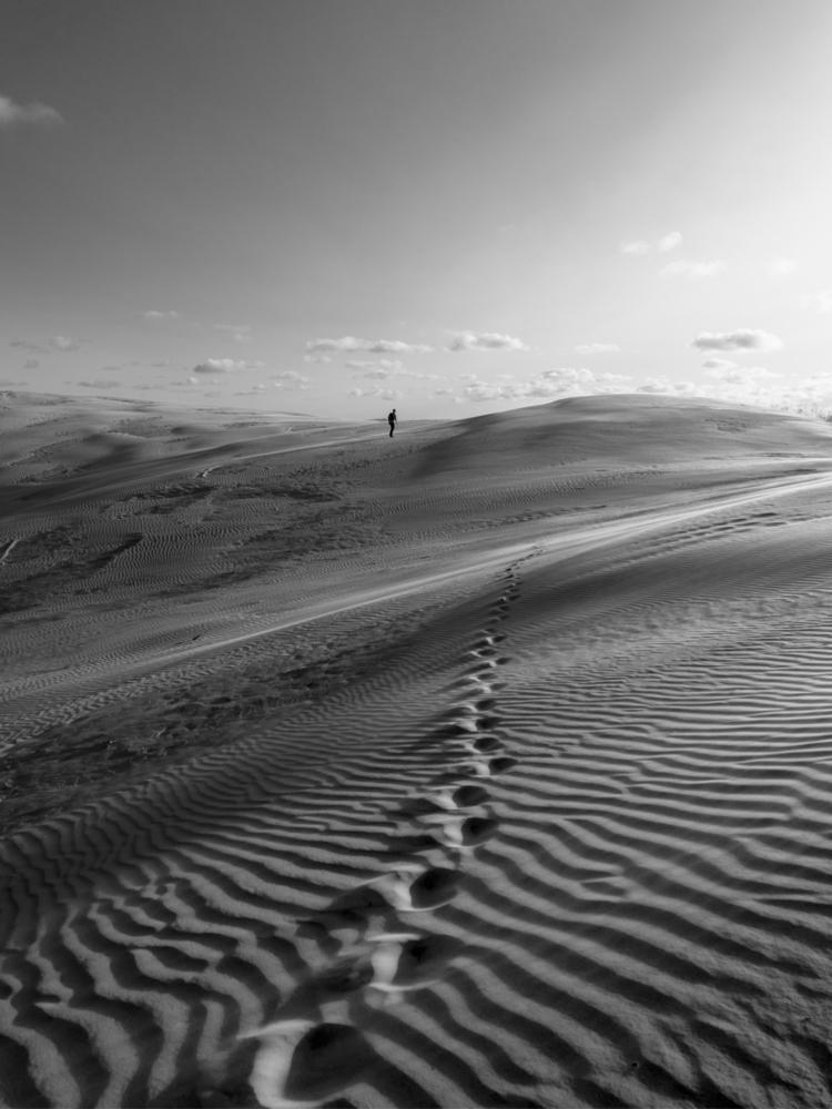 bnw, dune, landscape, denmark - visuellamende | ello
