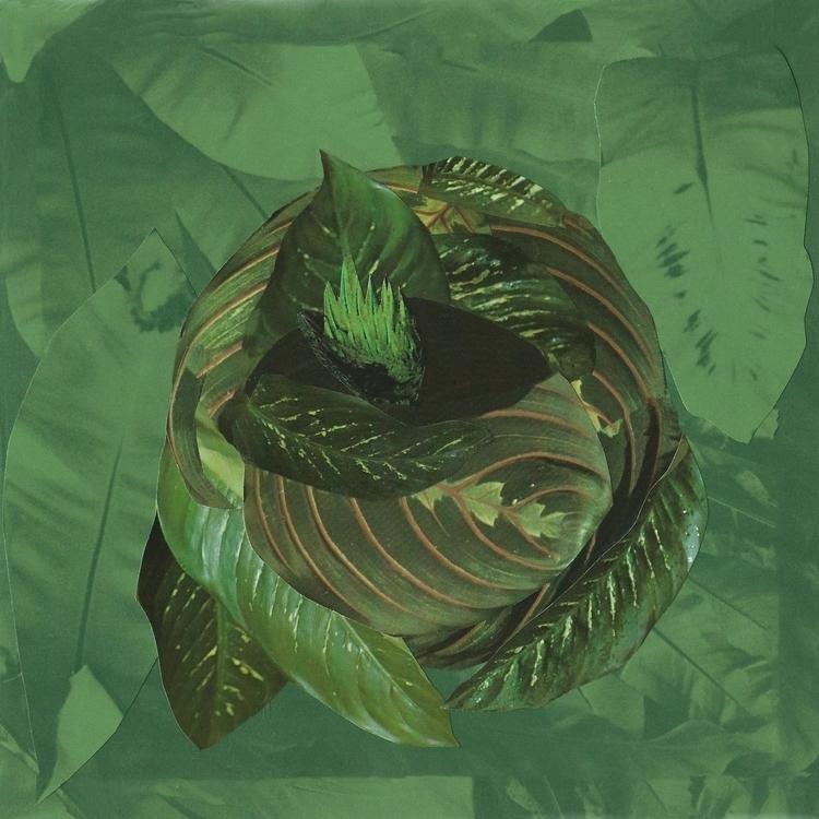 Variation 1 green Handmade coll - anitaacollages | ello