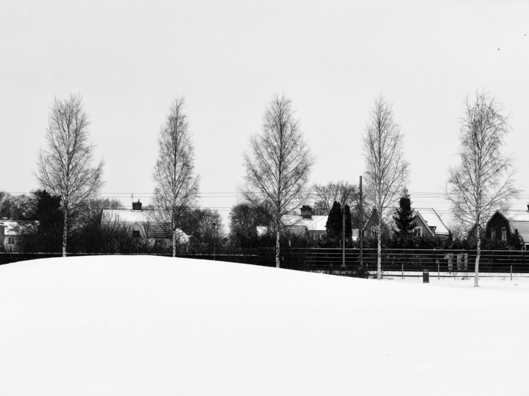 Uppsala, Sweden - snow, trees - georgios | ello