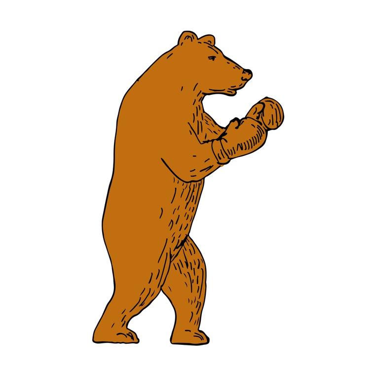 Brown Bear Boxing Stance Drawin - patrimonio | ello