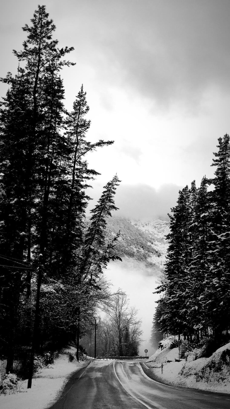 Road - landscape, snow, nieve, blackandwhite - slraquel | ello