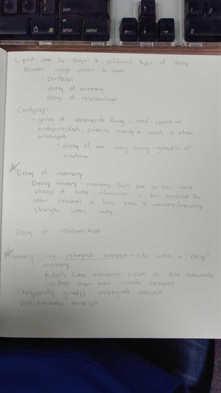 Project 2 ideas/research: Optio - tessa_bohn-carmichael   ello