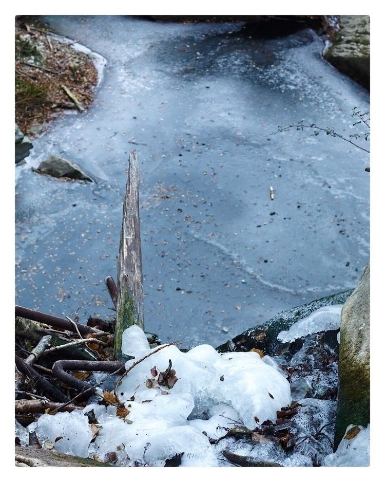 Cold Day - canonespaña, photo, canon - noelgar99   ello