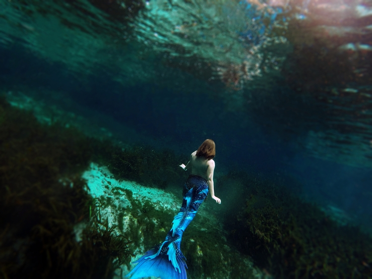 week swim mermaids Alexander Sp - chrystalolivero | ello