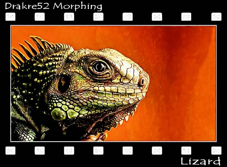 Lizard Morphing Film: Page - drakre52 | ello