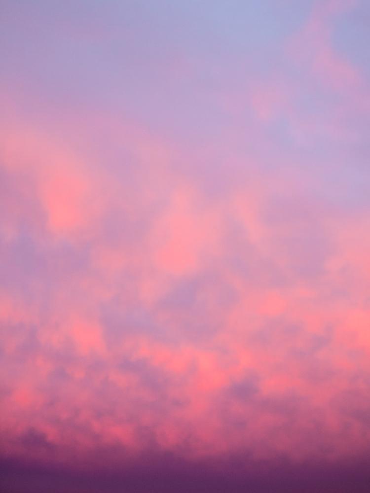 morning, bedroom window - esselghee   ello
