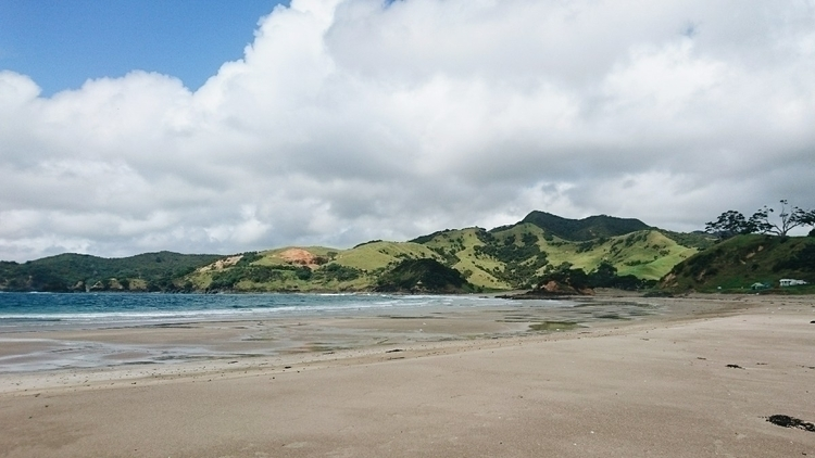 day - newzealand, campingtrip, naturephotography - onustudio | ello