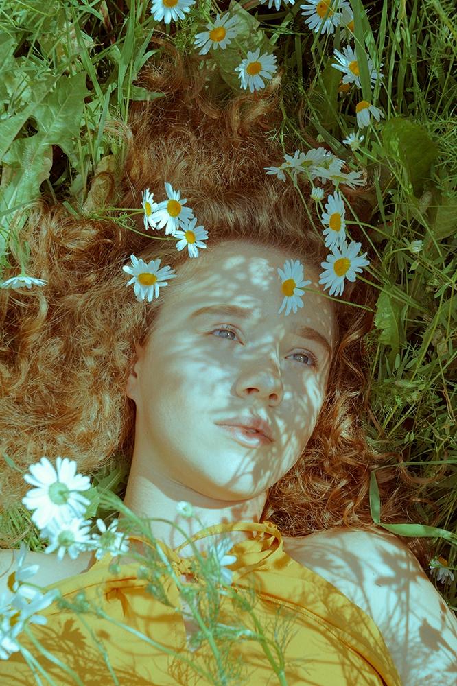 Chamomile meadow Anna Atlas , f - annaatlas | ello
