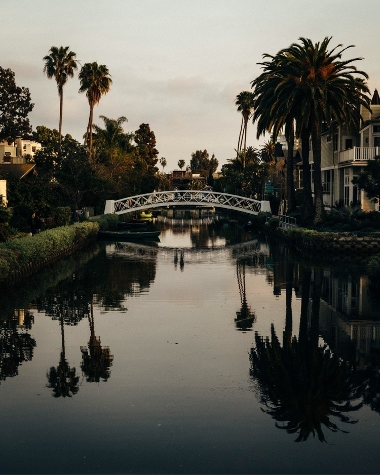 Venice - venice, venicebeach, california - paulwithap | ello