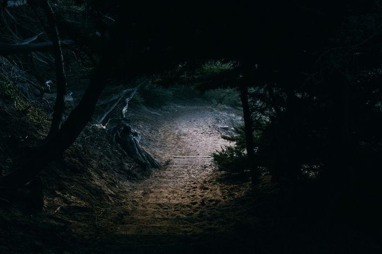 Trail - hiking - talesofducky | ello