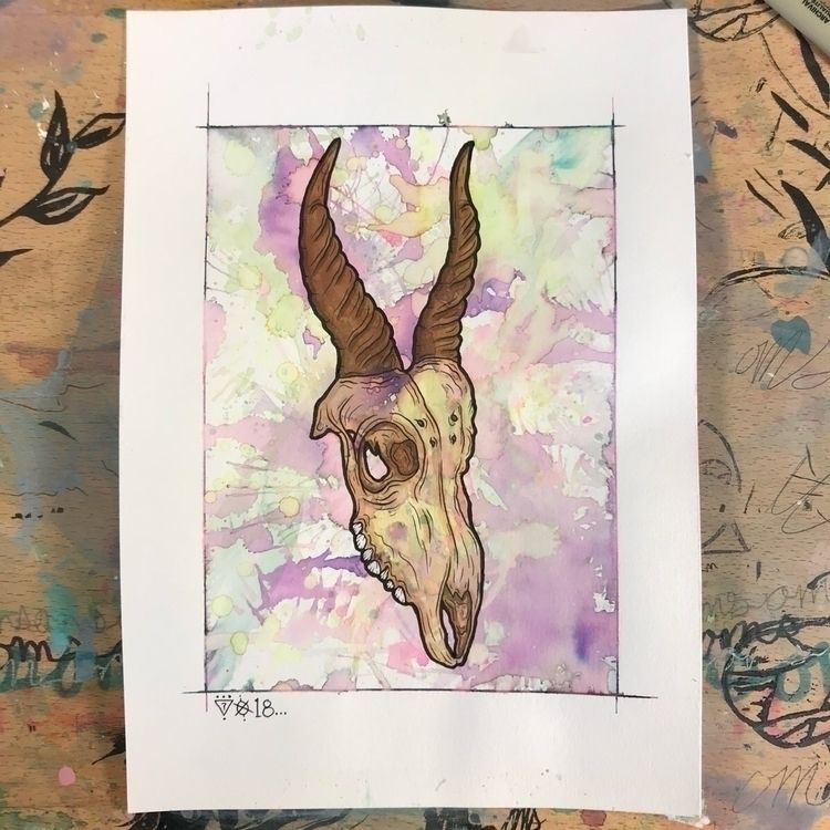 """Antelope."" 7x10 Watercolor/Ink - xoxmxsx 