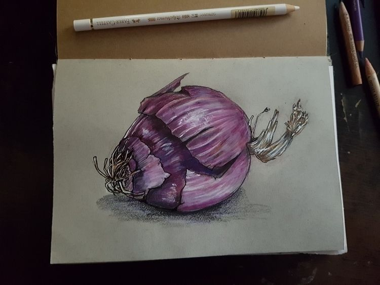 onion, drawing, illustration - jeanninema | ello