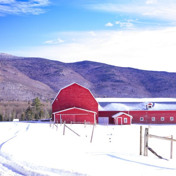 Winter Days Guide Stowe Vermont - sunnycoastlines | ello