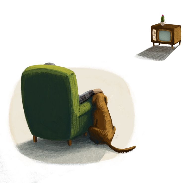 friend - dog, chair, television - puikeprent | ello