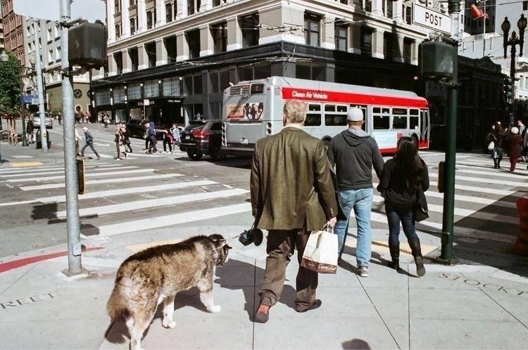 •San Francisco, California. 201 - milkyselects | ello