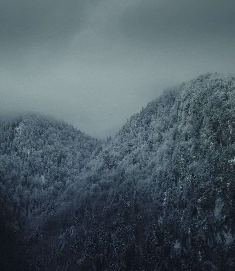 Frozen forest_2 - Landscapes, winter - romkgraphics | ello