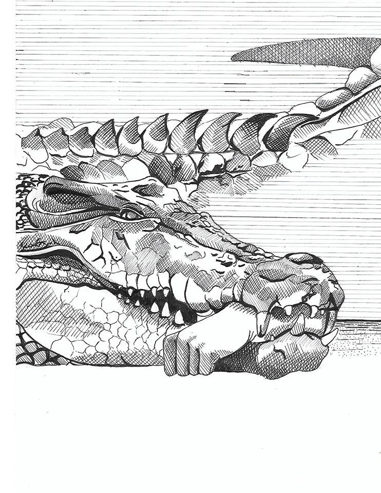 Crosshatch Crocodile process sw - kathleenbult | ello