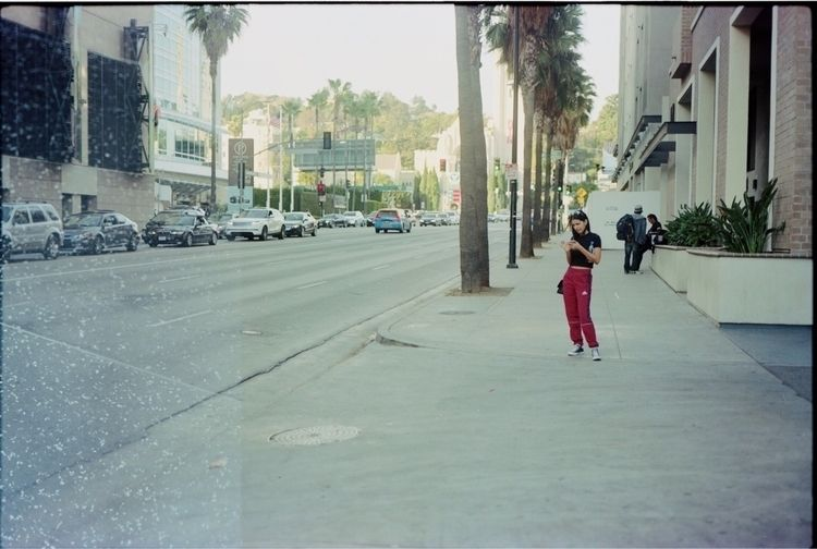 Hollywood - 6x9, portra400, 120film - stephenschuylerl | ello