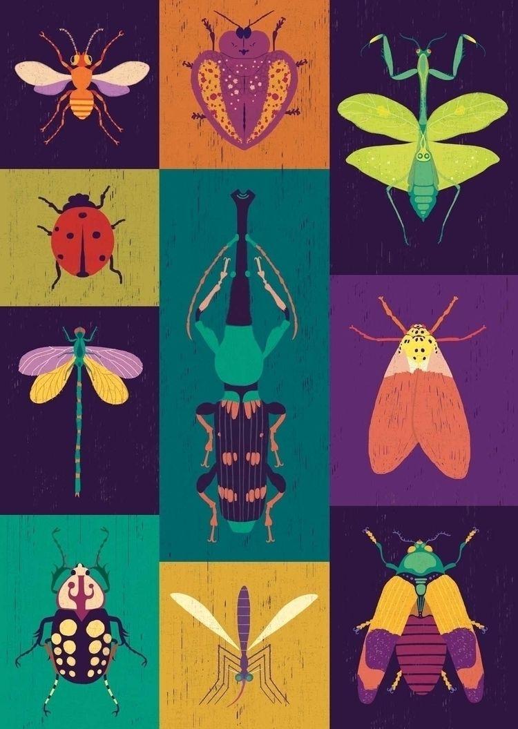 Bugs - silviamauri, illustration - silviamauri | ello