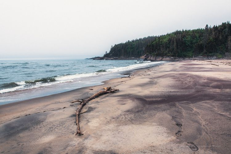 Wild Northern Beach Base de ple - francisdufour   ello