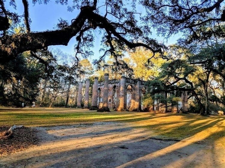 Sheldon Church Ruins - Savannah - sucramlednarb | ello