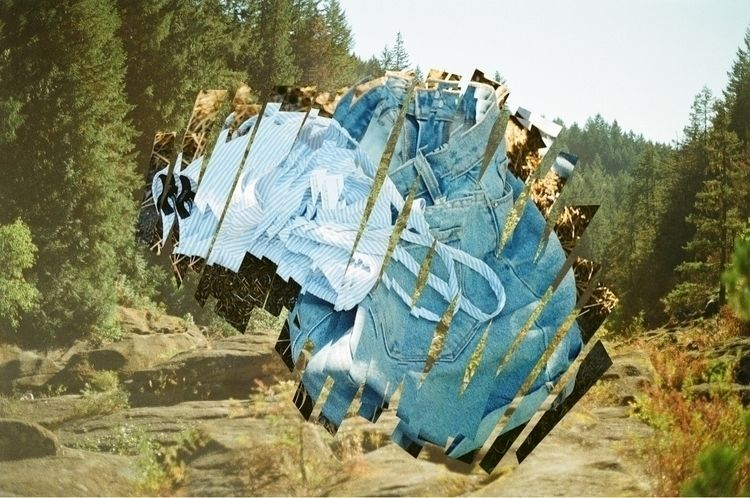 collage, filmphotography, film - jamieoosterhuis | ello