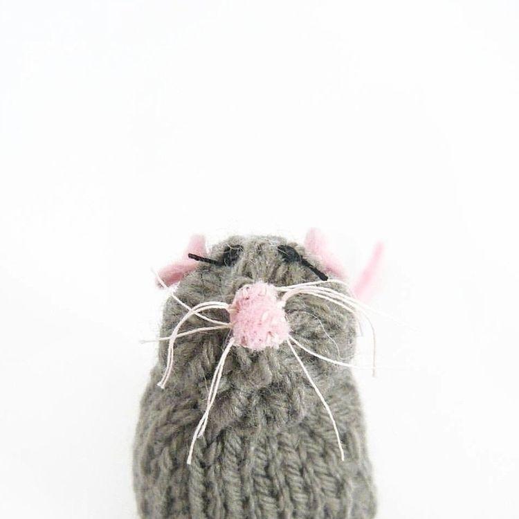 mice passport photos preparing  - severinakids | ello