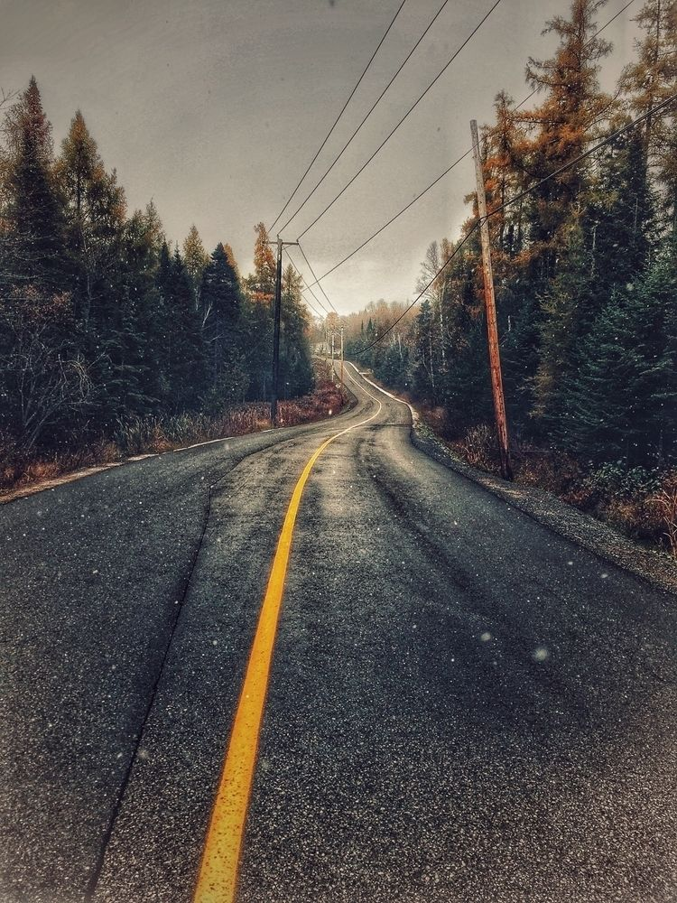 Road Nature - theashtontaylor | ello