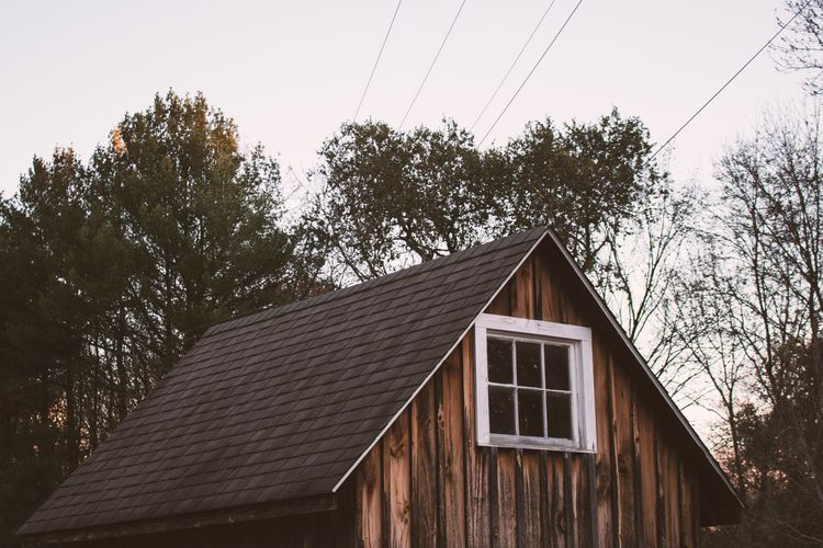photo, photography, cabin, forest - hannahward | ello