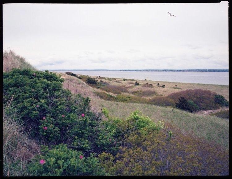 Rhode Island  - film, 120mm, landscape - lorenzomitil | ello