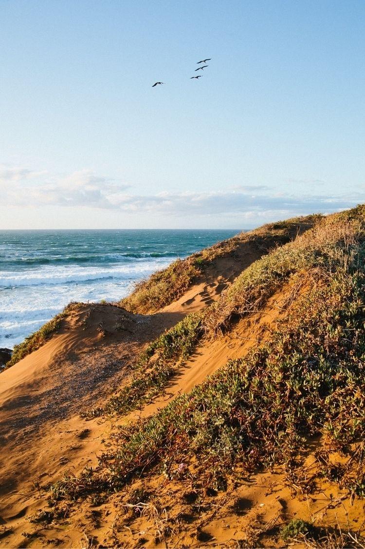 Dunes - stephencrutch | ello