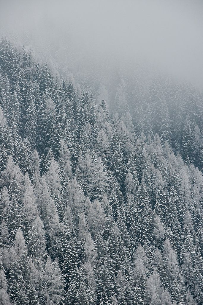Winter wonderland foggy mountai - emeris | ello