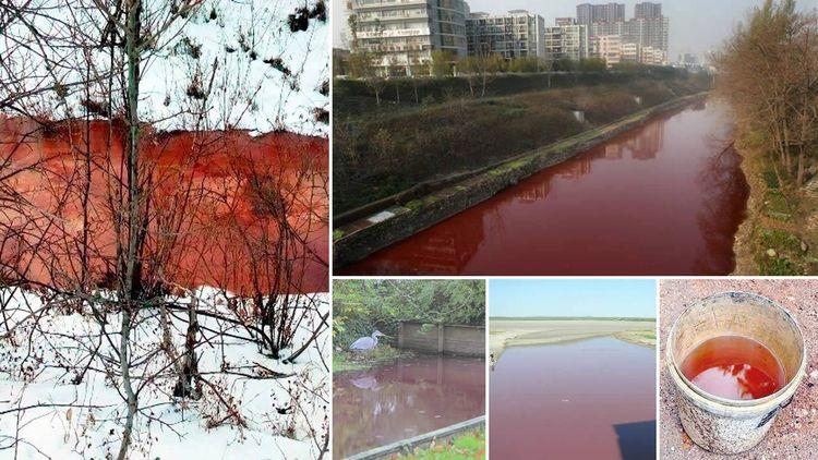 Muchos ríos de todo el mundo se - codigooculto   ello