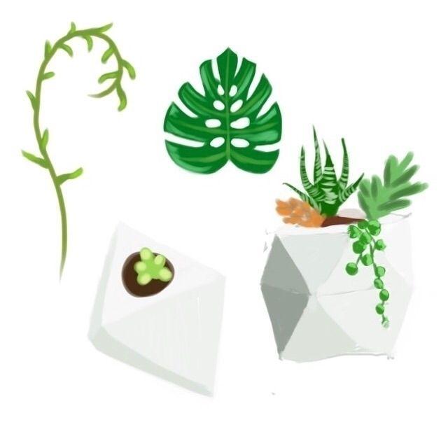 Plant studies - art, artist, painting - garvoids | ello