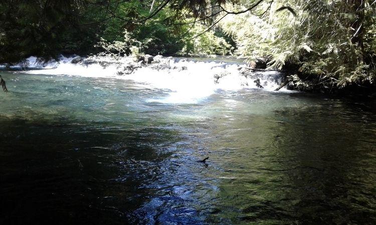 Exploreing Lava creek - ellophotography - carleigh_m | ello