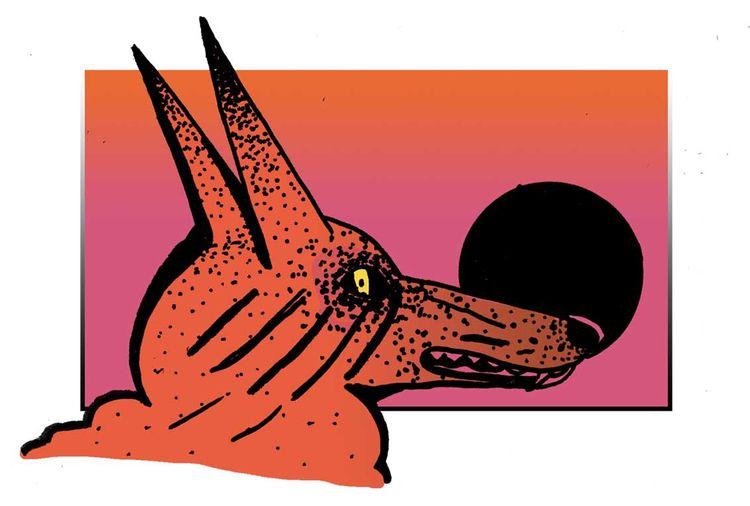 Coyote - illustration, design, wildlife - dylansgriffith   ello
