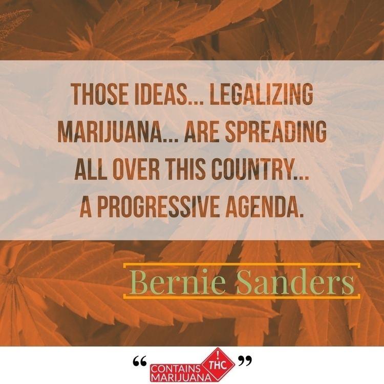 Feel Bern - containsmarijuana | ello