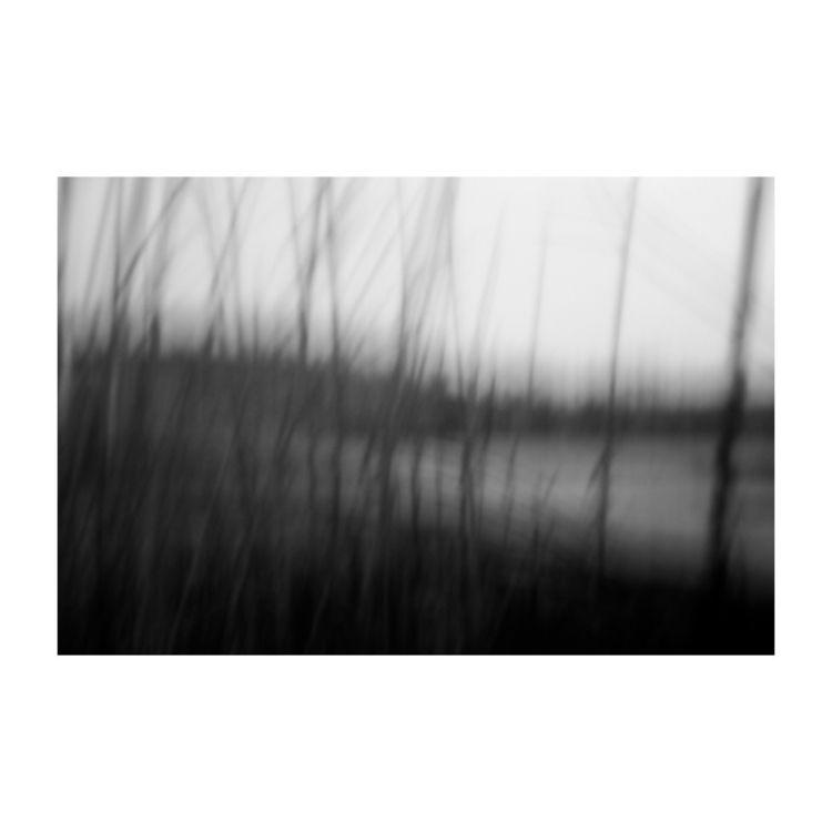 series: 'Tolerated' website: mi - miriam_baans | ello