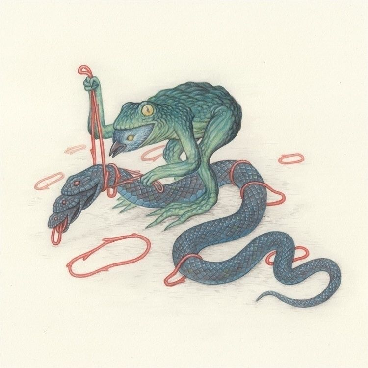 Frog bird snake. Graphite water - nicksheehy | ello