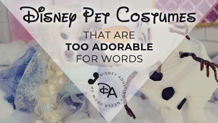 Disney Pet Costumes Adorable Wo - disneyadulting   ello