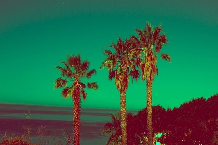 Green Skies Beach Nights - br8on | ello