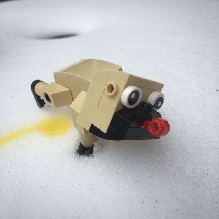 eat yellow snow - lego, pug - swalephoto | ello