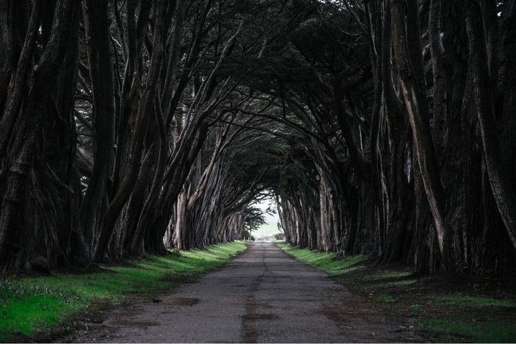 Tunnel Vision  - photography, mood - arcollectives | ello