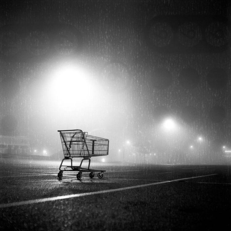 Shopping Cart Mamiya C330 Ilfor - danielregner | ello
