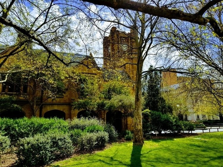 University Melbourne - sandstone - sezzyharris   ello